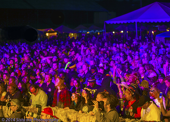 SNWMF-2014- Review-Island Stage-Sista Irie
