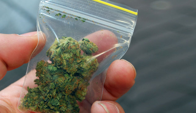 More States Say Yes to Marijuana as NFL Continues to Say No- Island Stage Magazine