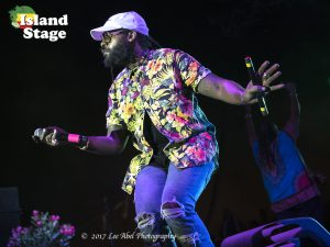 SNWMF 2017 Tarrus Riley-Lee Abel Photography-Island Stage Magazine